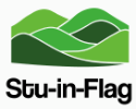 stu-in-flag