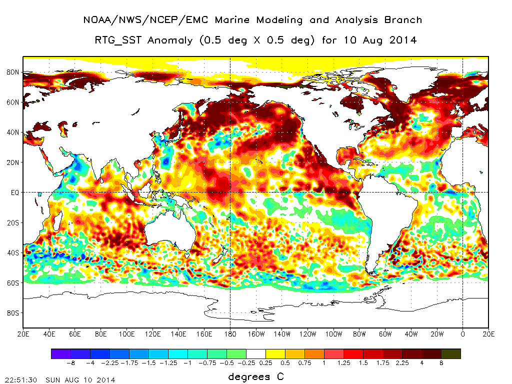 Global sea surface temperature anomaly, August 10, 2014. (National Centers for Environmental Prediction